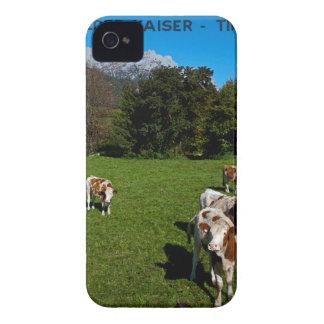 Wilder Kaiser - Cows iPhone 4 Case