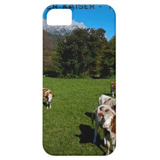 Wilder Kaiser - Cows iPhone SE/5/5s Case
