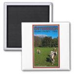 Wilder Kaiser - Cows Magnets