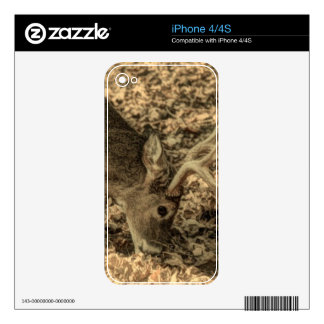 wilderness Camouflage outdoorsman whitetail deer Decal For iPhone 4