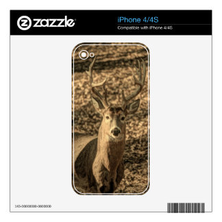 wilderness Camouflage outdoorsman whitetail deer Skins For iPhone 4S