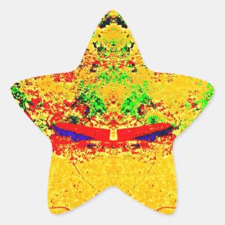 Wilderness Color Mix Star Sticker