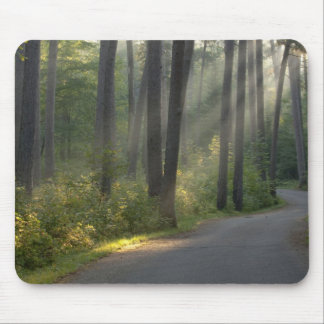 Wilderness Drive, Itasca State Park, Mouse Pad