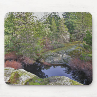 Wilderness pond mouse pad