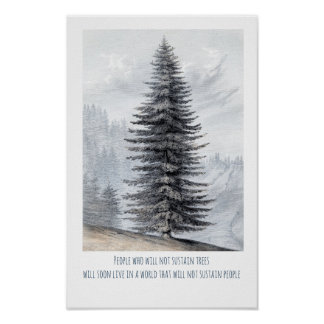 Wilderness Tree With Quote Poster