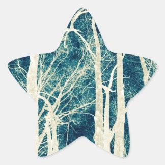Wilderness Vision Star Sticker