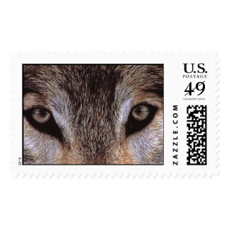 wilderness watching postage stamps