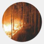 Wildfire Blaze Classic Round Sticker