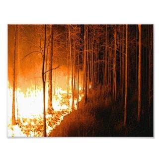 Wildfire Blaze Photo Print