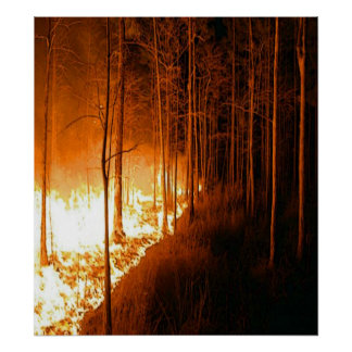 Wildfire Blaze Poster