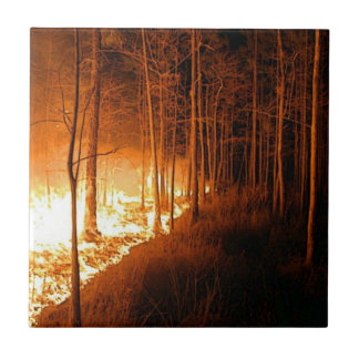 Wildfire Ceramic Tile