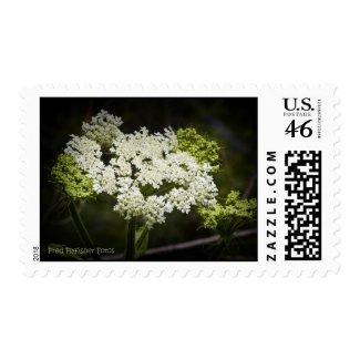Wildflower 19 postage