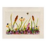 Wildflower 1b postales