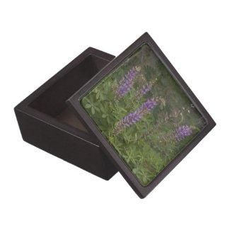 Wildflower 6 Gift Box Premium Keepsake Box