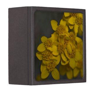 Wildflower 7 Gift Box Premium Trinket Boxes