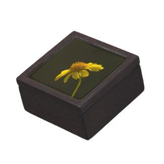 Wildflower 8 Gift Box