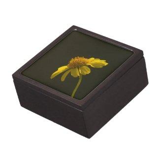 Wildflower 8 Gift Box Premium Keepsake Box