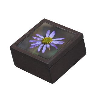 Wildflower 9 Gift Box