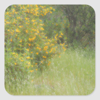 Wildflower amarillo e hierba personalizable pegatina cuadrada