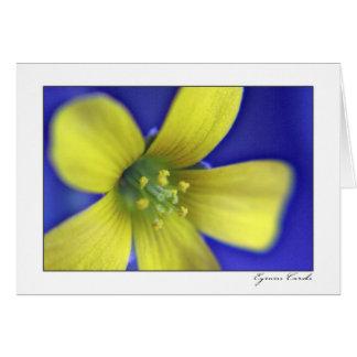 Wildflower amarillo tarjeta de felicitación
