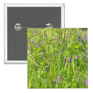 Wildflower - arveja copetuda