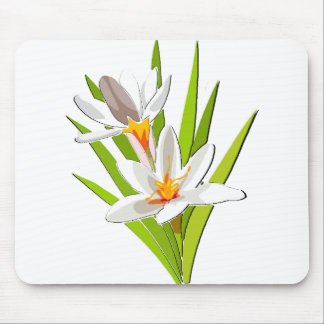 Wildflower Beauty Mouse Pad