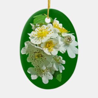 Wildflower blanco de los rosas de Multiflora Adorno De Reyes