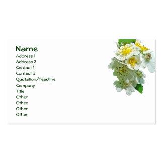 Wildflower blanco de los rosas de Multiflora Tarjeta De Visita