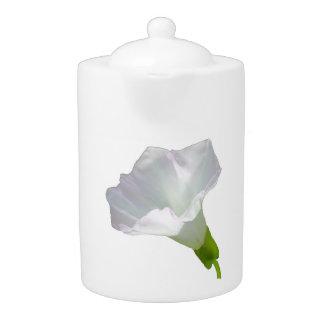 Wildflower blanco delicado