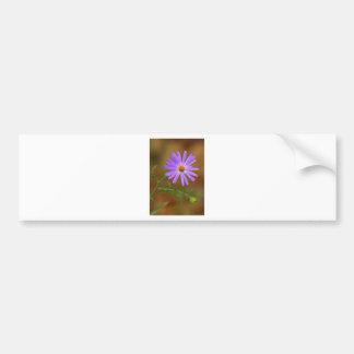 Wildflower Bumper Sticker