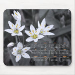 Wildflower Cluster Photography 2012 Calendar Mouse Pads