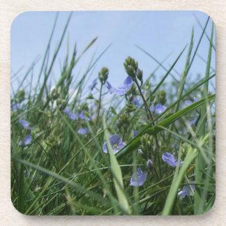 Wildflower Coasters