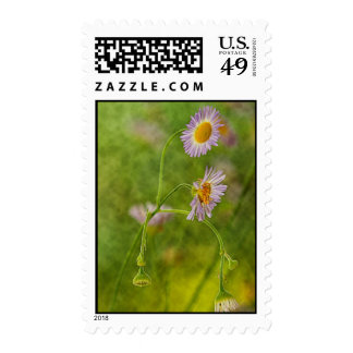 Wildflower de Georgia Timbres Postales