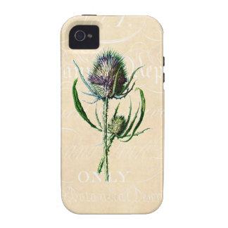 Wildflower de la antigüedad del cardo del escocés iPhone 4/4S fundas