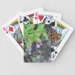 Wildflower de la botánica de la flor de la flora d cartas de juego