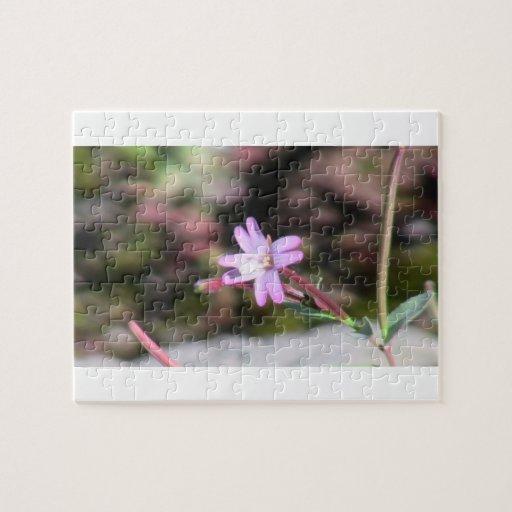 Wildflower de la botánica de la flor de la flora d puzzles
