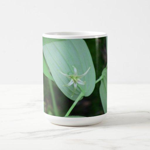 Wildflower de la botánica de la flor de la flora d taza de café