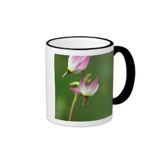 Wildflower de la estrella fugaz, California, los E Tazas De Café