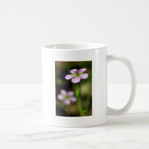 wildflower de la montaña taza de café