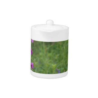 Wildflower del Fireweed de Alaska