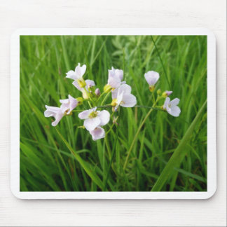 Wildflower delight mouse pad
