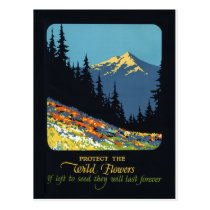 Wildflower earth day environmental deco postcard
