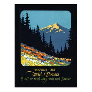 Wildflower earth day environmental deco postcard