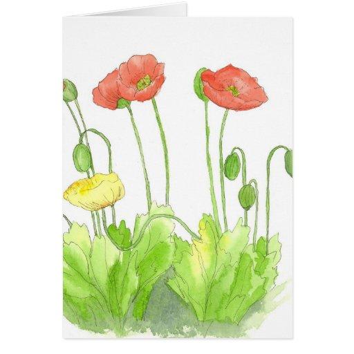 Wildflower en blanco de la acuarela de la tarjeta