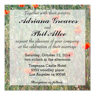 Wildflower Field and Red Poppies Blooming Card