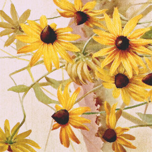 Coneflower wrapping paper zazzle wildflower floral coneflower flower wrapping paper mightylinksfo