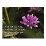 Wildflower flotante tarjetas postales