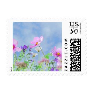 Wildflower Flower Nature Postage