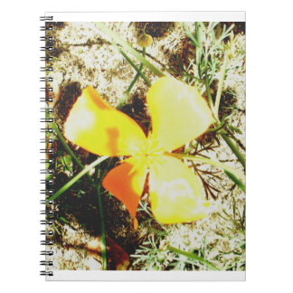 Wildflower Freedom Keepsake Collection Notebook