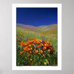 Wildflower Hills Print